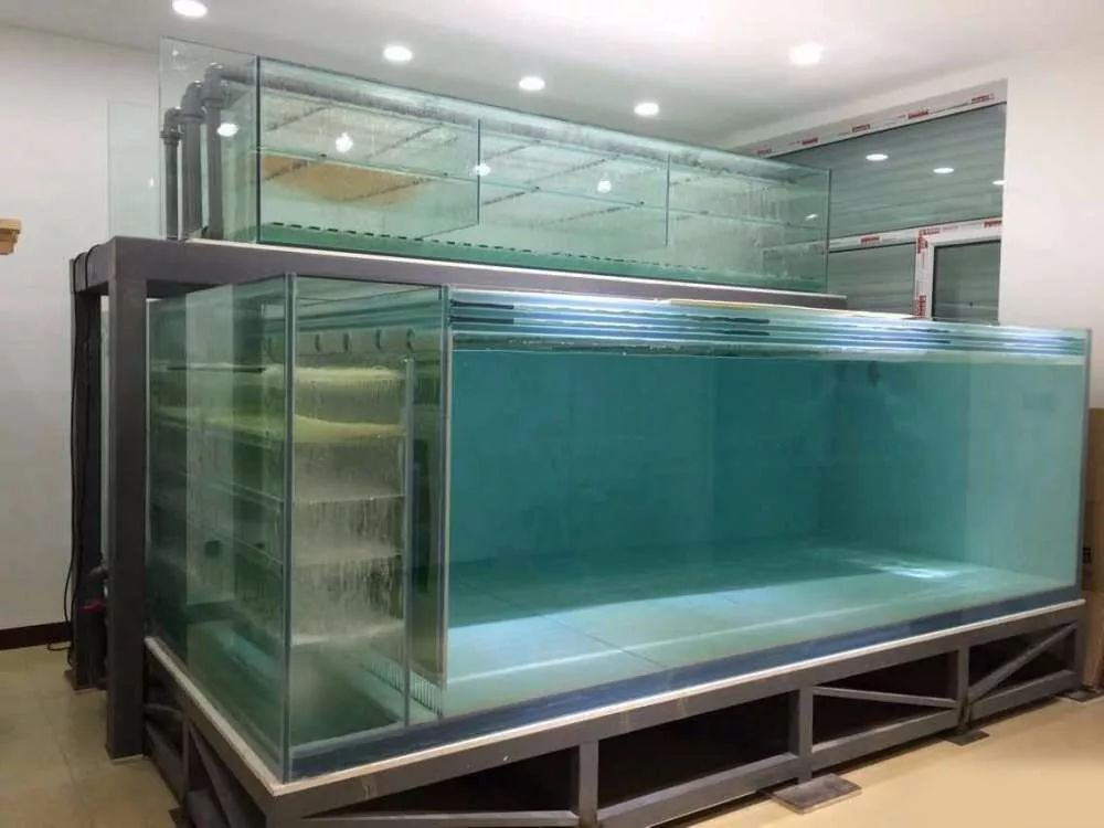 海水缸底缸过滤设计图