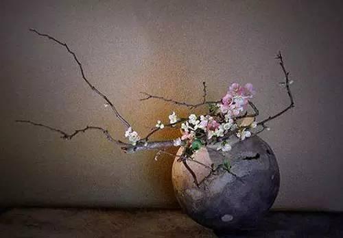 【红茶教室】花道   一种简静唯美的生活诗和远方