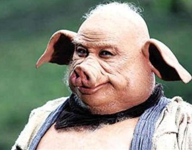 为什么英国科学家要创造一种人 猪杂交的物种呢