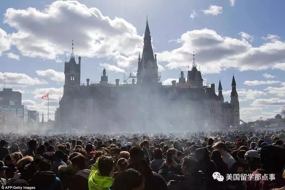 """这种""""毒品""""在加拿大被宣布合法了图片"""