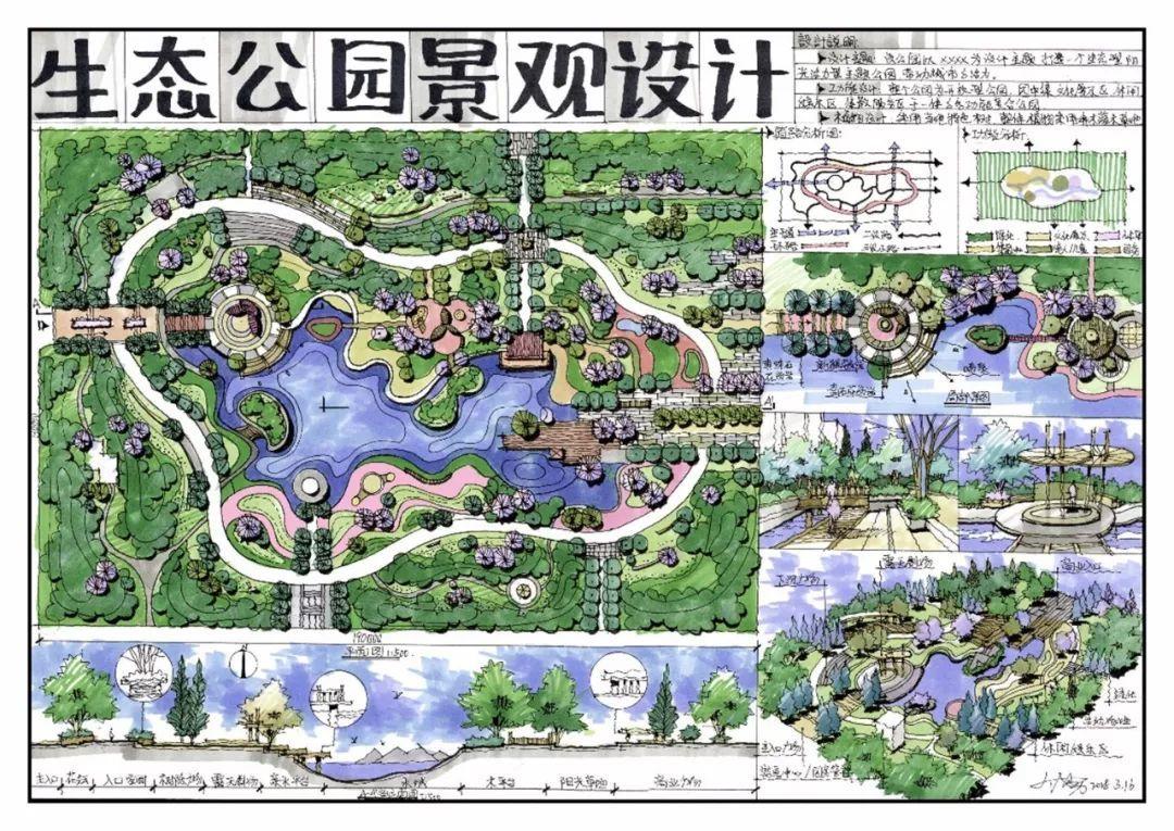 景观总平面图分析