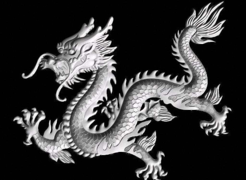 营口坠龙事件后,贵州又出现龙化石,现实中龙真的存在?