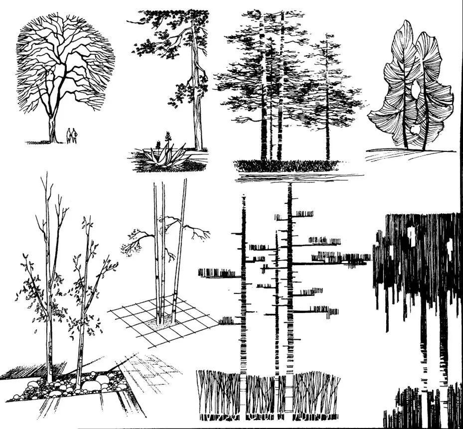 政务 正文  《建筑画环境表现与技法》作者钟训正,这一本手绘书是由