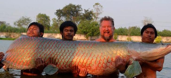 差点灭族的最威武的巨型鱼,一亿年前已存活太罕见