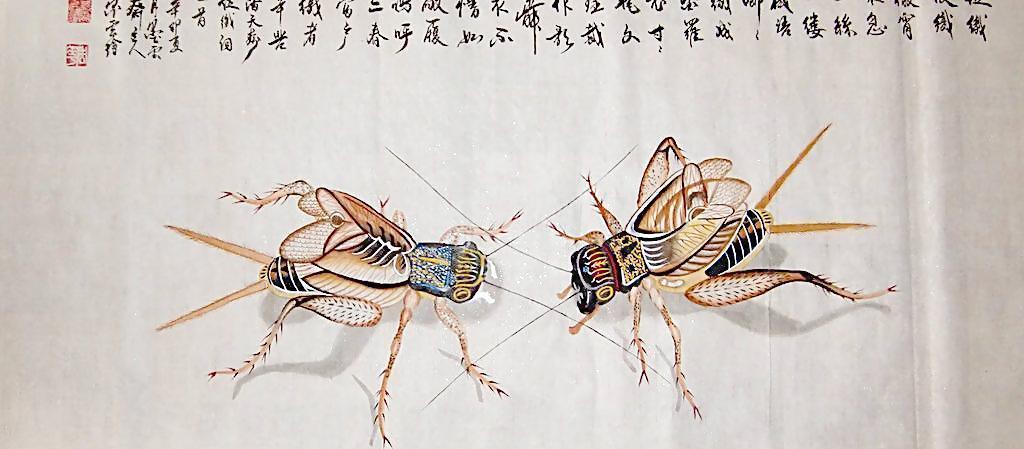 蟋蟀皇帝被骂了几百年,只有懂历史的才知道,他有多伟大