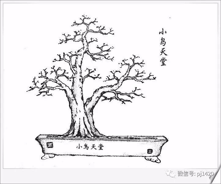 岭南美食手绘黑白