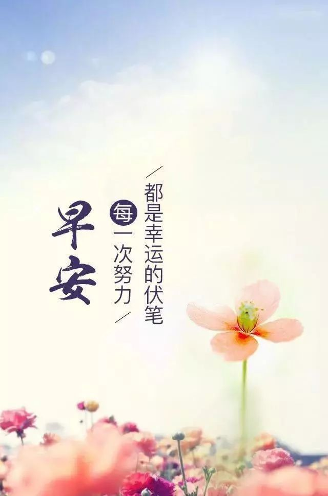 朋友圈励志句子早安心语图片2019 早安心语