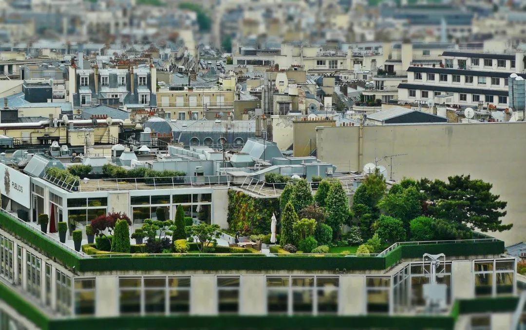 法国合法转租房子迎来一波新操作!又能给假