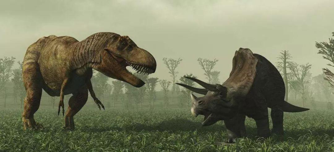 澳大利亚矿业大亨克   莱夫-帕尔默计划在澳大利亚北部旅游区建造一个机械恐龙主题公园