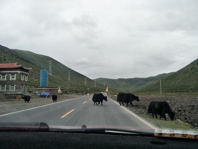 自驾走川藏线?看看这些路况再决定! 川藏线旅游攻略 第14张