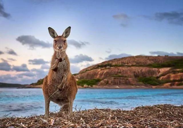 这个地方美得一塌糊涂!来西澳大利亚,一起见证神奇的地球!