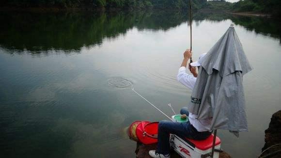 夏季黑坑、河流、湖泊钓鱼的饵料搭配技巧