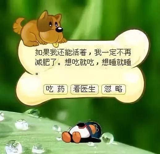 qq宠物死亡怎么办_qq宠物要关了,曾经希望它死的如今却哭了