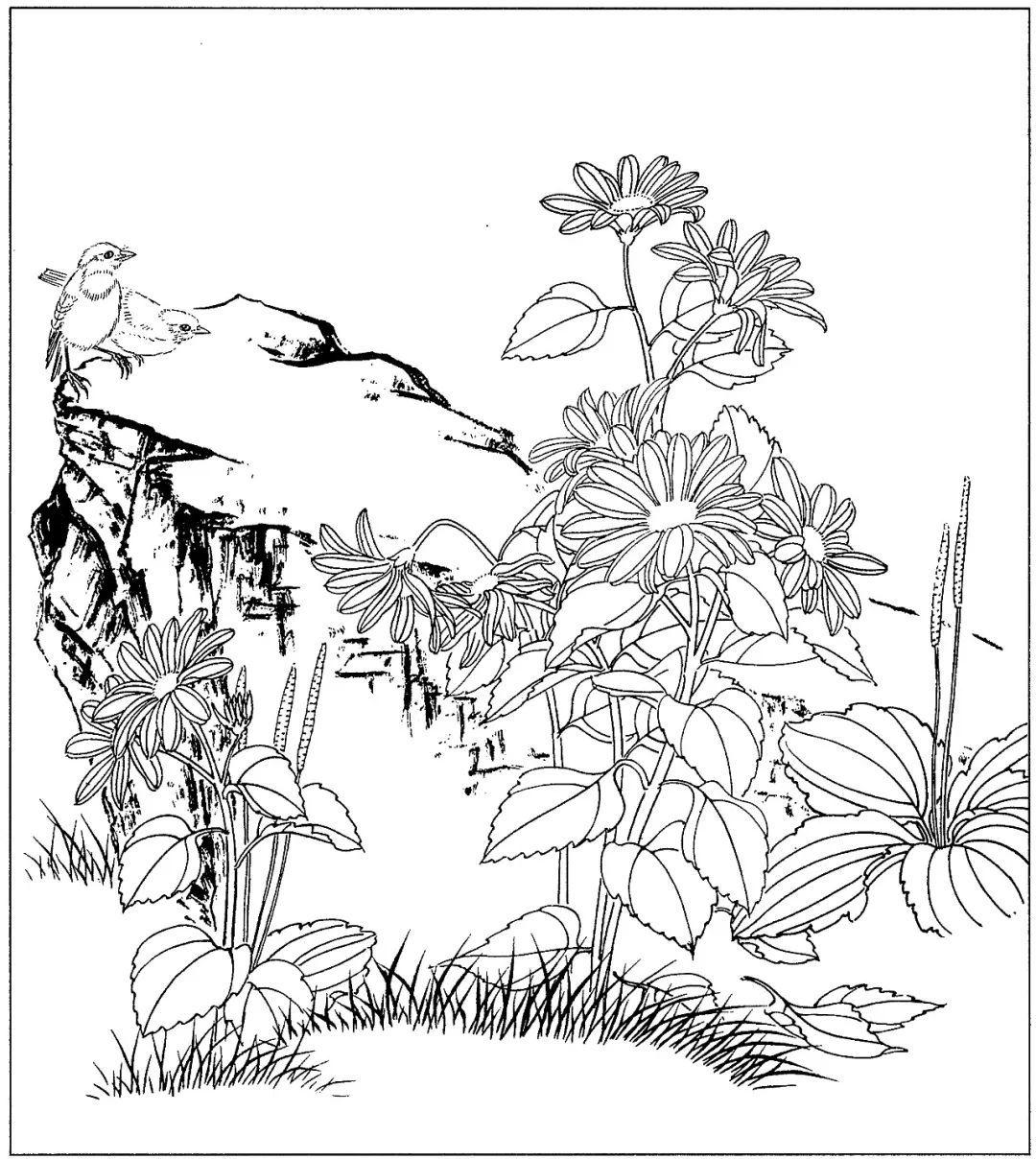梅兰竹菊四君子国画线描素材高清81幅