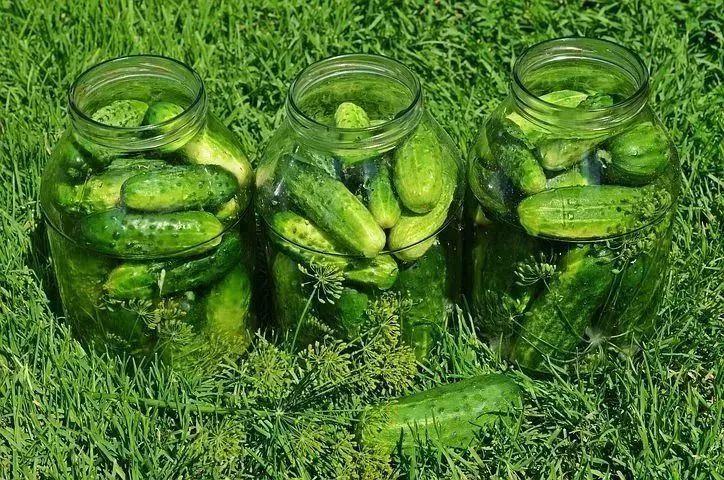 【图】比西瓜还解渴,水分多多又便宜,还不伤胃,早知道每天都吃呢