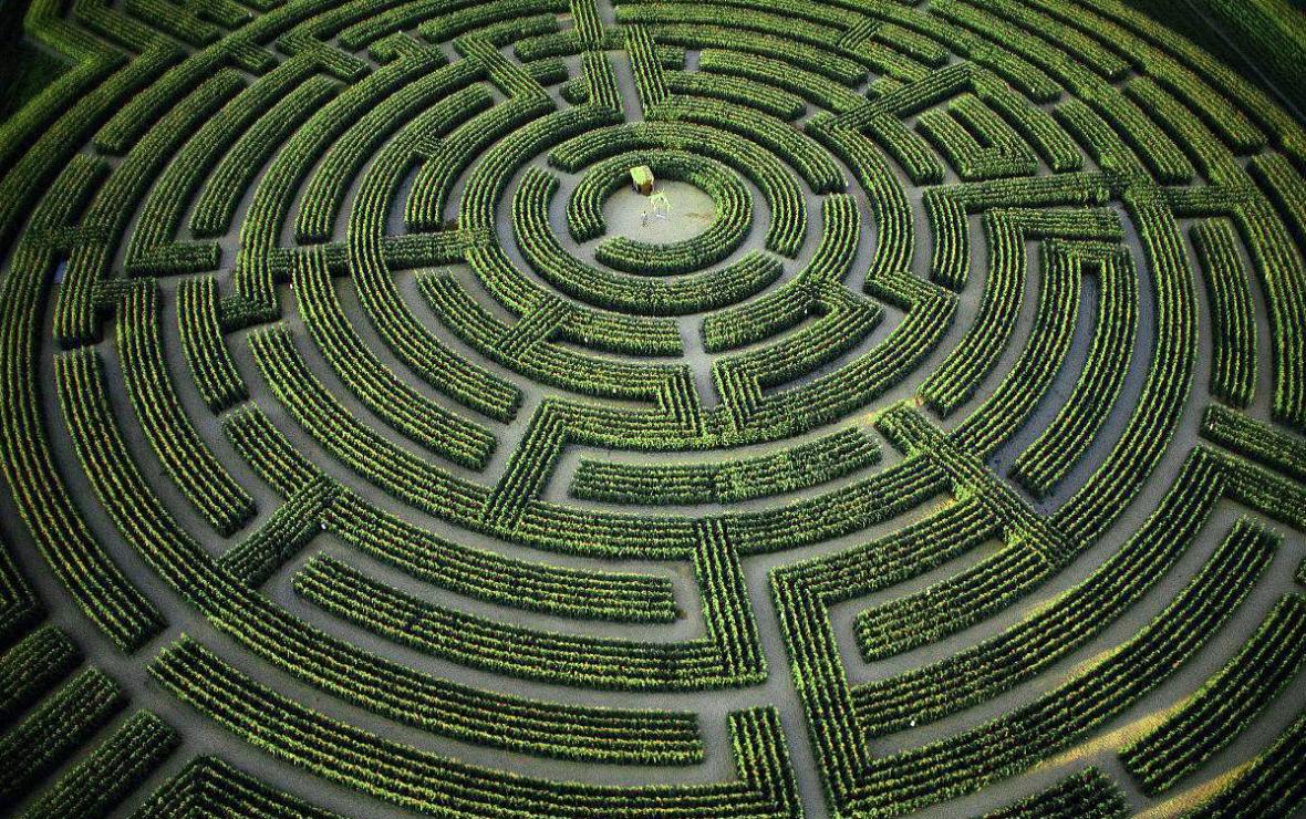 世界上最可怕的8个迷宫花园,进去容易但可能出不来