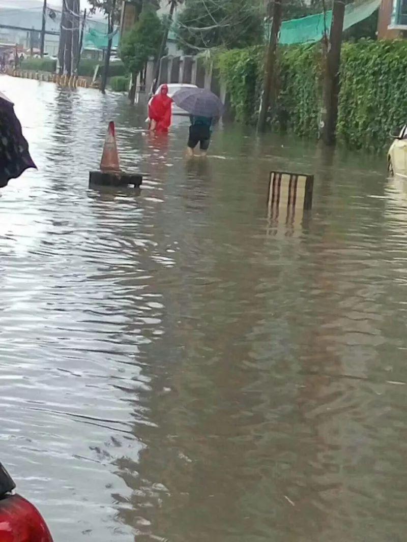 甚至一些坡地的积水已深到▲西安长乐路段铁口附近@a坡地的大白菜教程光弓调弓图片