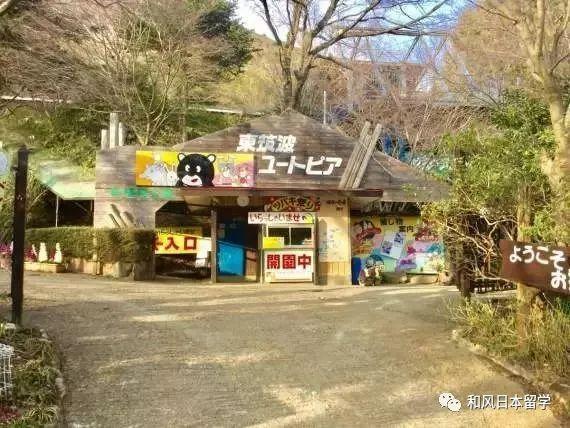 日本最惨动物园,多次上综艺难道也改变不了现在的惨状吗?
