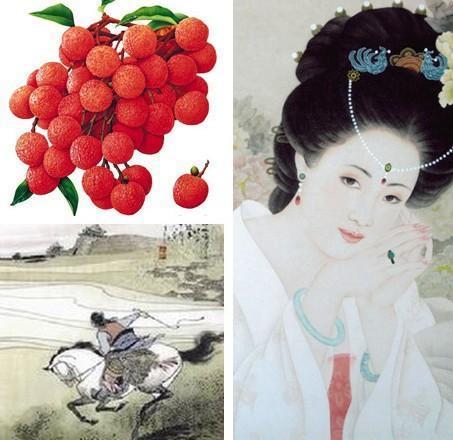 """杨贵妃最爱的""""妃子笑""""究竟源自哪里?"""