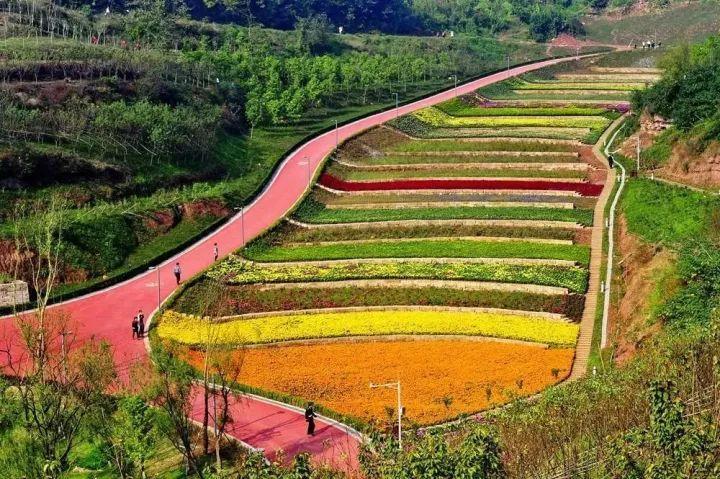 二,以农业观光园为依托的地产开发图片