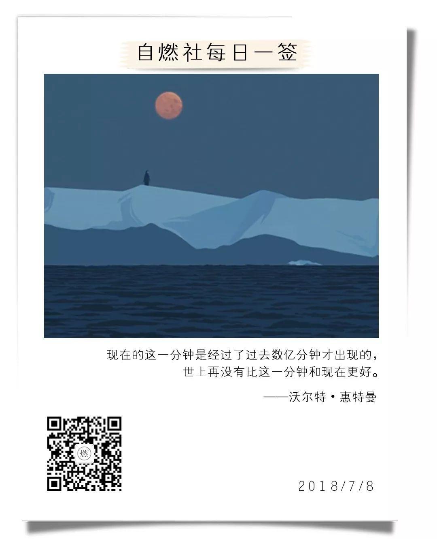 不仅是王俊凯、热巴的电影,这本书也能让你找回内心的宁静!