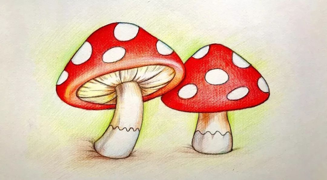 画蘑菇 涛叔叔会讲童话 涛叔叔会画画 涛叔叔开了一个 会讲童话的美术图片