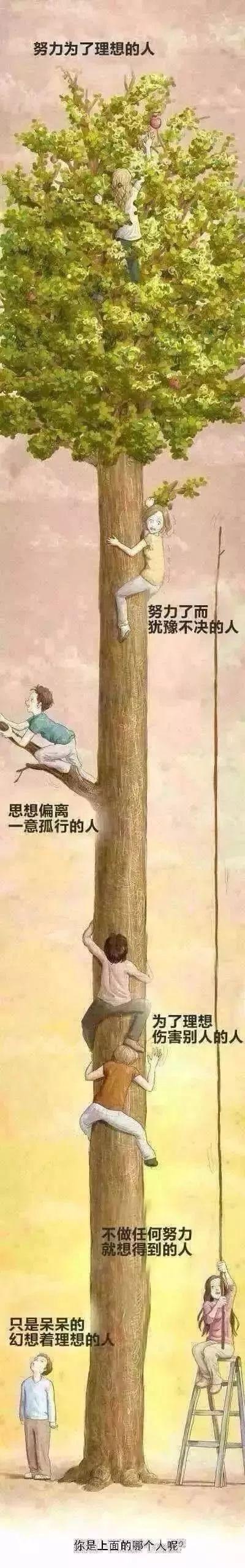 這棵樹上哪個人像你?