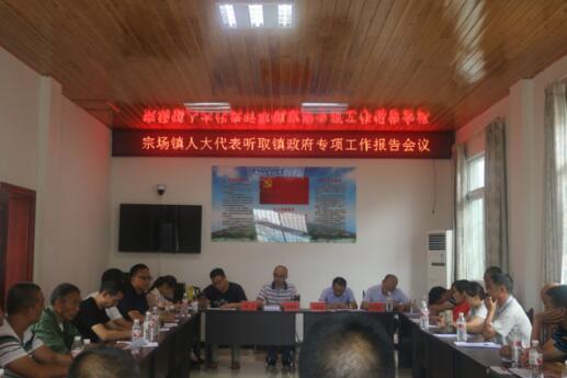 宗场镇人大主席团召开专题会议听取镇政府专项工作情况报告