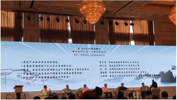 论剑光明顶——微利时代,中国光伏路在何方?