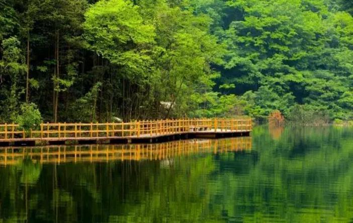 河南这5个景区最适合老年人:不用怎么爬山,也能看到好风景