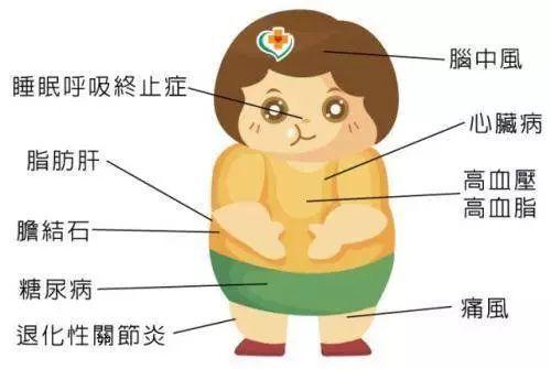 肥胖是会呼吸的痛,终于明白为什么我这么胖!