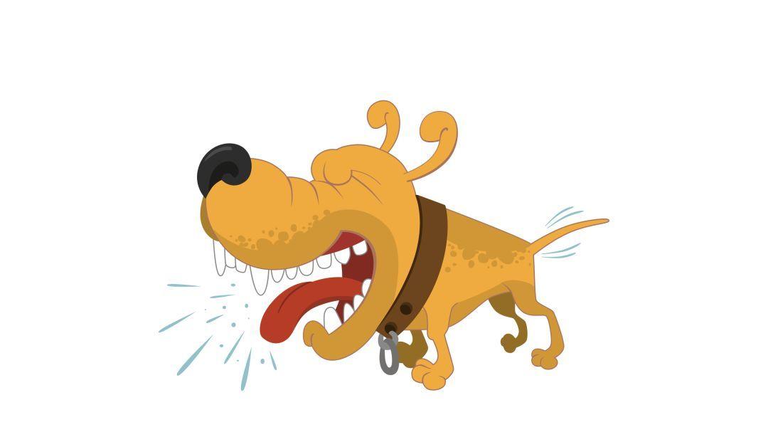 只有被疯狗咬伤后才会得狂犬病吗?这些认知误区该改改了~