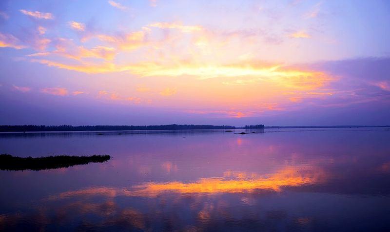 在盛夏的七月,请到宝应湖国家湿地公园