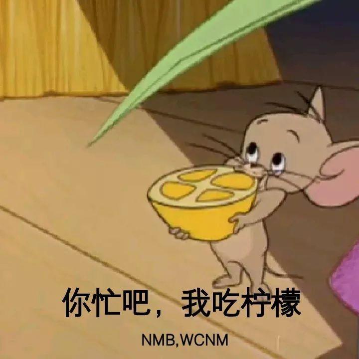 猫和老鼠囹�a�i)�aj9b�x�_猫和老鼠表情包 i 毁童年啊