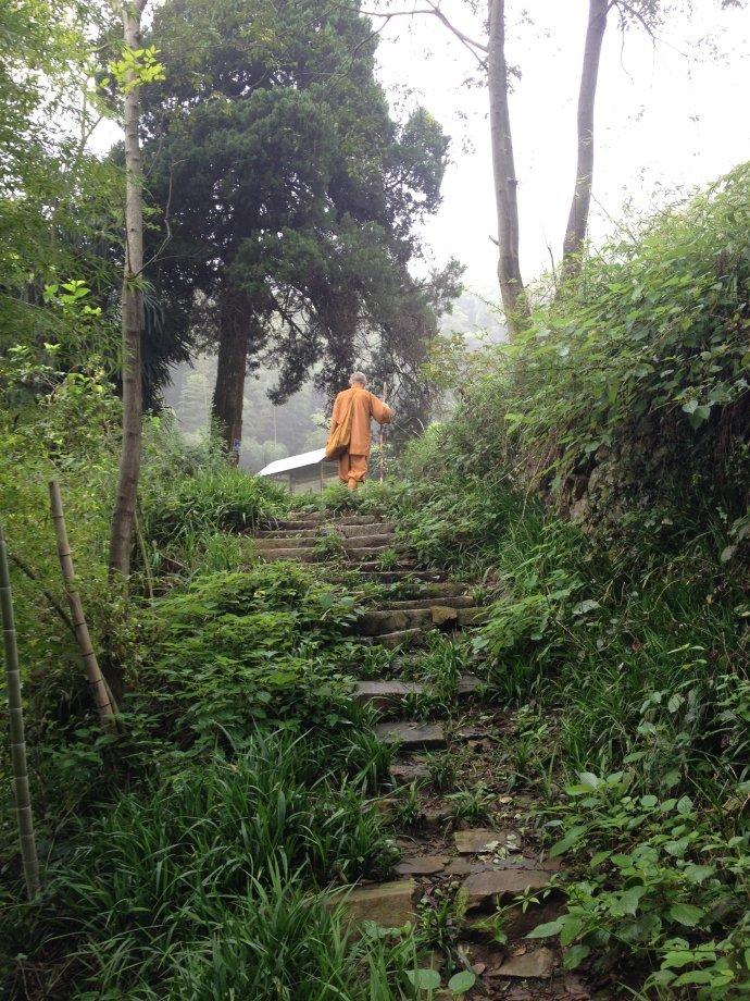 安徽这个人,住在茅草屋里13年,在深山上筑起了一座精神圣殿!