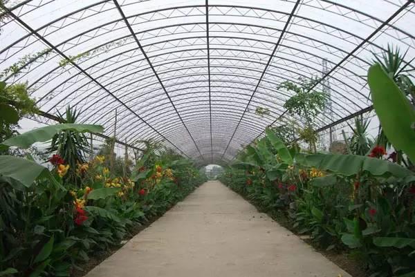 拱形钢结构雨棚图纸