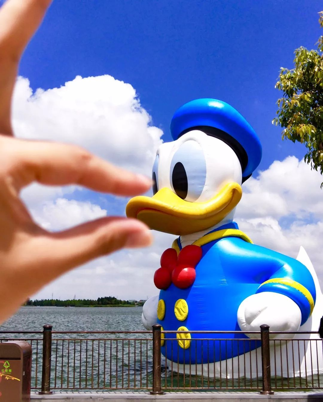 上海迪士尼小镇,星愿湖时有异动,到底怎么了?