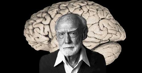 现实生活中95%的人,仅仅只使用了自己的左脑。