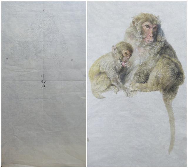 国画工笔画动物猴子绘画技法步骤解析,惟妙惟肖的工笔