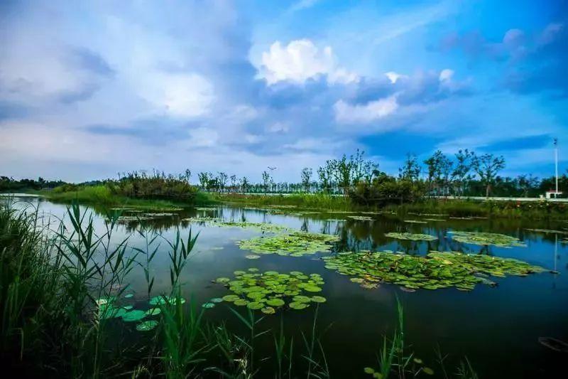 徐州市博物馆,徐州汉文化景区 泉山区  那我也得秀秀 云龙山 云龙湖