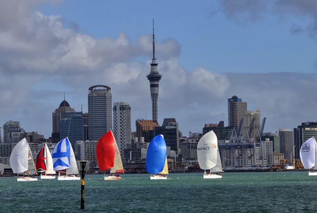 福利 | 带父母去新西兰的人,都后悔了……