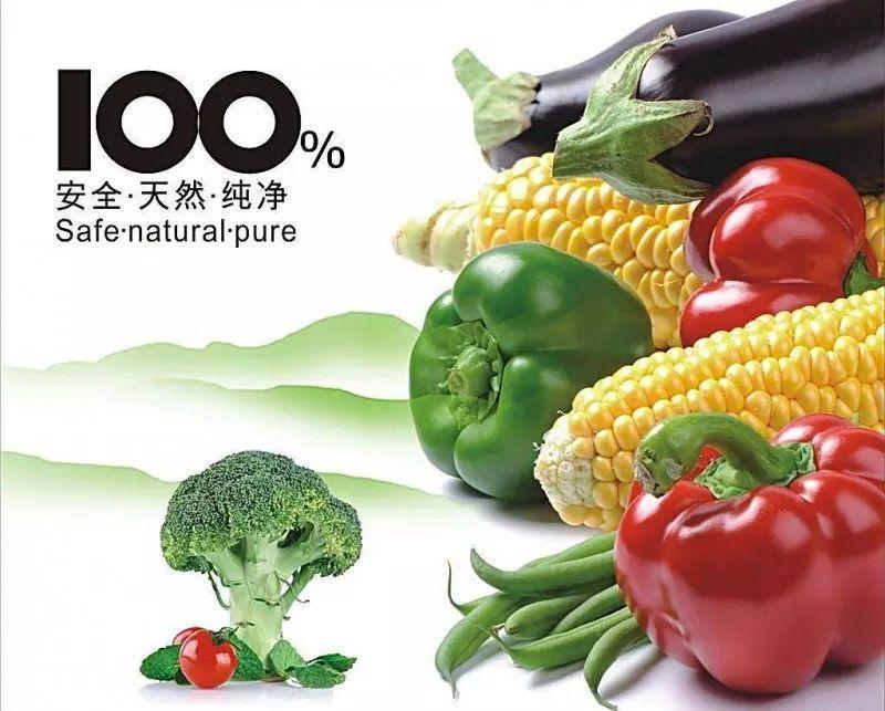 【实用】洗菜泡得越久菜越好?有机蔬菜没农药?这些小知识你一定要知道!