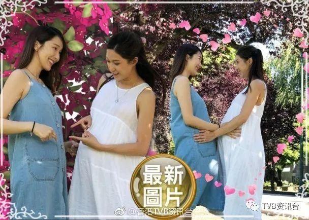 准妈妈李亚男与好友钟嘉欣同框合影,眼神对视互摸孕肚十分有爱!