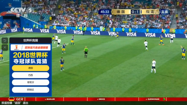 金猫银猫CSmall带你玩嗨世界杯!
