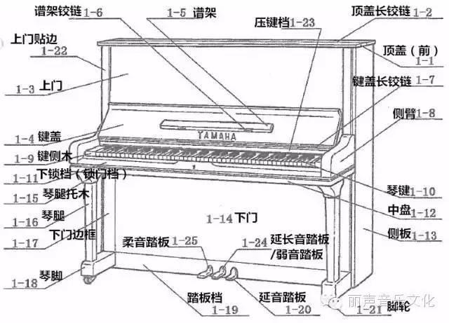 图文并茂的钢琴结构知识来一波