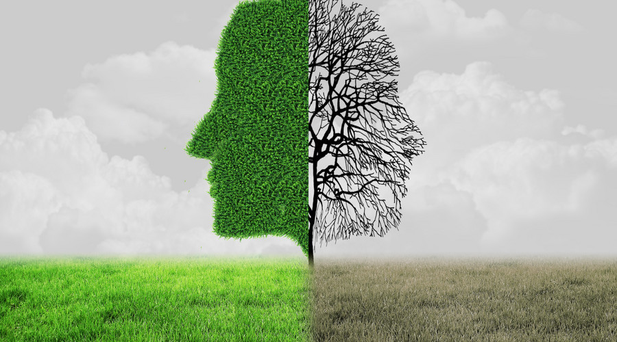 设置心理健康公共必修课程,教育部对大学生心理健康教育做出要求