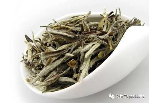 完美国际白毫银针_为什么这些护肤品牌会钟情中国白茶?