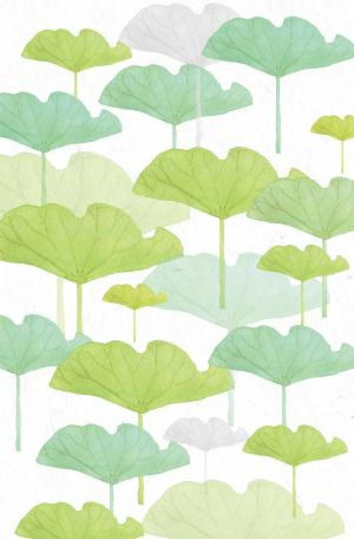 森系手绘绿植手机壁纸,放松眼睛第一步