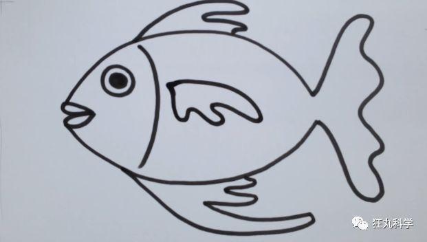 有史以来最简单的一次教程 卡通鱼简笔画