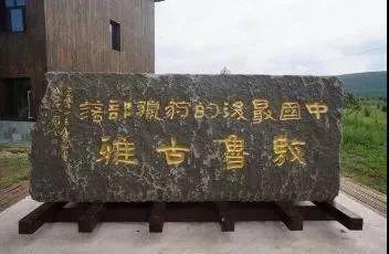 前沿丨香港理工大学清华大学联合采集鄂温克使鹿猎民口述史